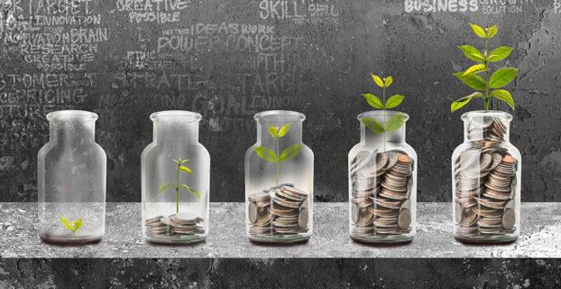 Plantas y ahorros en crecimiento